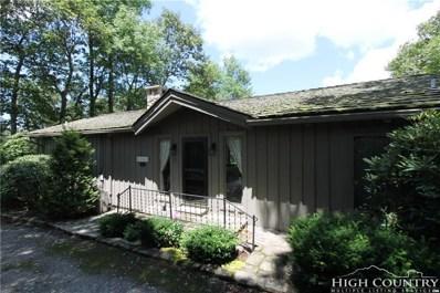 145 High Peak Drive, Boone, NC 28607 - MLS#: 209257