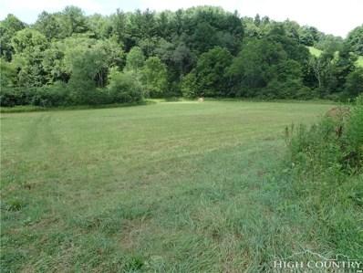 1827 Shatley Springs Road, Crumpler, NC 28617 - MLS#: 209289