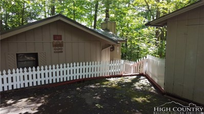 283 Teaberry Lane, Newland, NC 28646 - MLS#: 209451