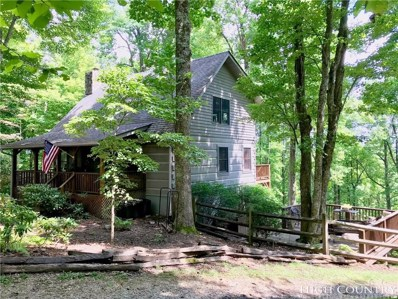 409 Oakwood Drive, Blowing Rock, NC 28605 - MLS#: 209865