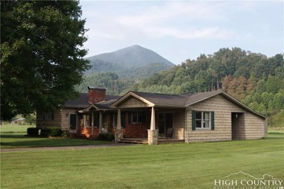 700 Three Top Road, Creston, NC 28615 - MLS#: 209999