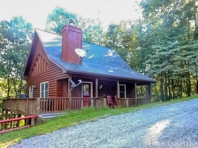258 Mountain Ridge Road, Piney Creek, NC 28663 - MLS#: 210020