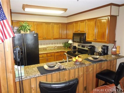 301 Pinnacle Inn Road UNIT 2314, Beech Mountain, NC 28604 - MLS#: 210039