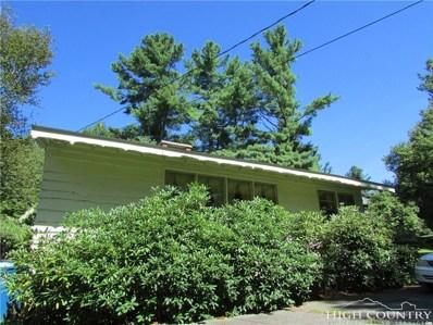 702 Chestnut Drive, Blowing Rock, NC 28605 - MLS#: 210086