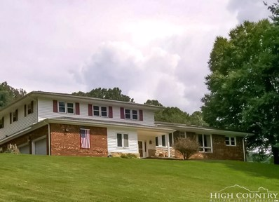 136 Spring Hope Drive, Zionville, NC 28698 - MLS#: 210274