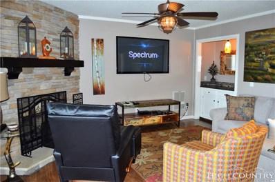 301 Pinnacle Inn Road UNIT 3208, Beech Mountain, NC 28604 - MLS#: 210365