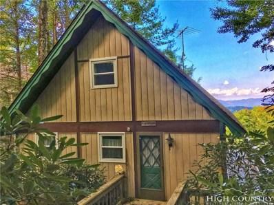 732 Pine Ridge Road, Beech Mountain, NC 28604 - MLS#: 210492