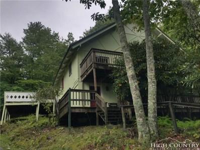 119 Creekridge Road, Beech Mountain, NC 28604 - MLS#: 210494