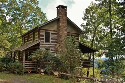 401 Tomahawk Drive, Todd, NC 28684 - MLS#: 210620