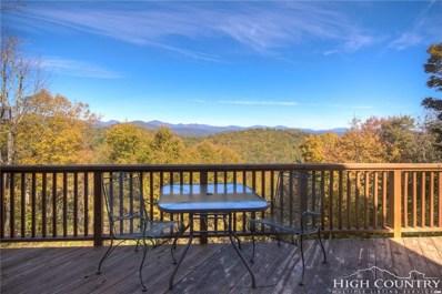 250 Ski Acres Drive, Blowing Rock, NC 28605 - MLS#: 211009