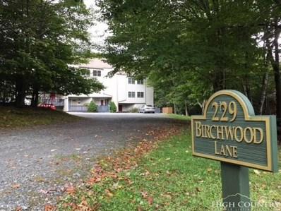 229 Birchwood Lane UNIT 14B, Beech Mountain, NC 28604 - MLS#: 211021