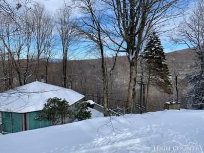 240 Birchwood Lane, Beech Mountain, NC 28604 - MLS#: 211057