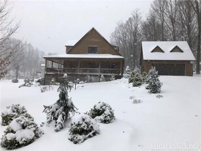 177 Turning Leaf Trail, Zionville, NC 28698 - MLS#: 211290