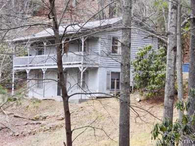225 Nile Park Drive, Blowing Rock, NC 28605 - MLS#: 211386