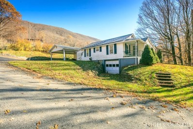 520 Harley Perry Road, Zionville, NC 28698 - MLS#: 211468