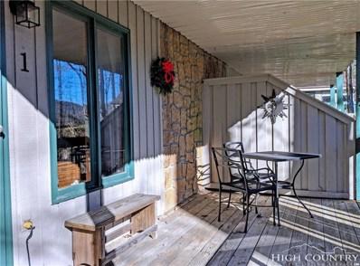 120 S Slope Loop UNIT 1, Banner Elk, NC 28604 - MLS#: 211803