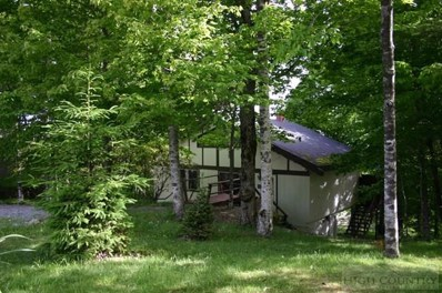 112 Pinnacle Ridge Road, Beech Mountain, NC 28604 - MLS#: 39207516