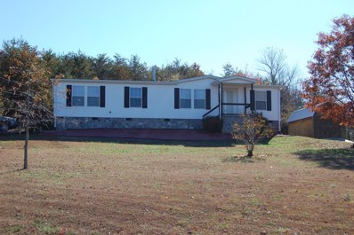 141 Sterling Avenue, Nebo, NC 28761 - MLS#: 20224