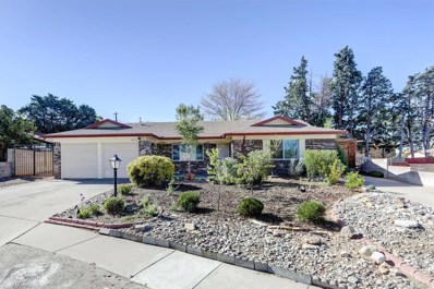 3416 Tahoe Street NE, Albuquerque, NM 87111 - #: 916766