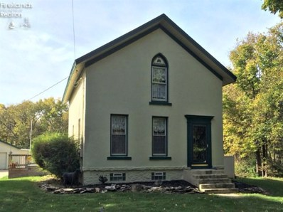 425 Division Street, Kelleys Island, OH 43438 - MLS#: 20150688
