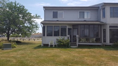 6467 Harris Harbor, Oak Harbor, OH 43449 - #: 20182971