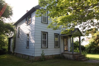 314 Division Street, Kelleys Island, OH 43438 - MLS#: 20183517