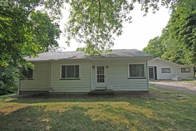 113 Maple Drive, Kelleys Island, OH 43438 - MLS#: 20184229