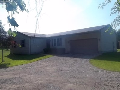 5218 State Route 113 East, Berlin Heights, OH 44814 - MLS#: 20184456