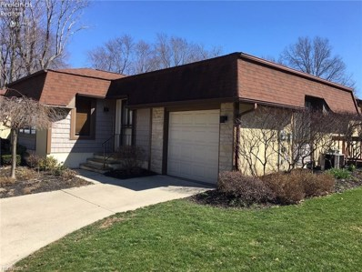 4610 Lake Road UNIT 19, Vermilion, OH 44089 - #: 20184820