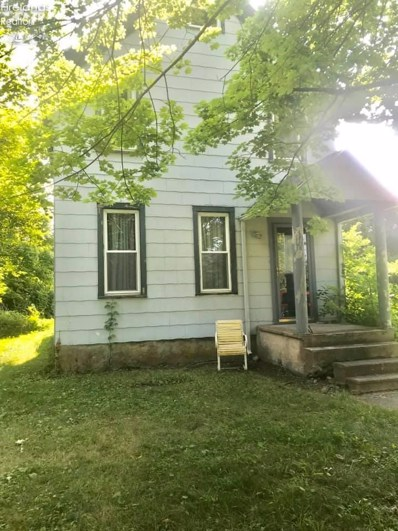 314 Division, Kelleys Island, OH 43438 - #: 20193805
