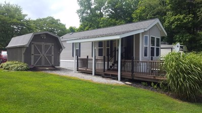 4675 Township Road 77 Unit 4 Lot 133, Mount Gilead, OH 43338 - #: 9041132