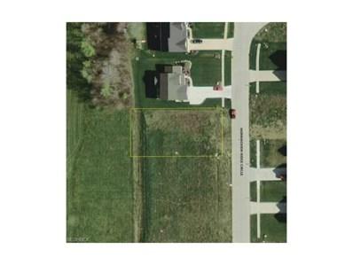 204 Morningview Ridge, Wadsworth, OH 44281 - MLS#: 3604227
