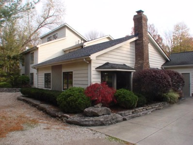10785 Tanglewood Trl, Concord, OH 44077 - MLS#: 3663327