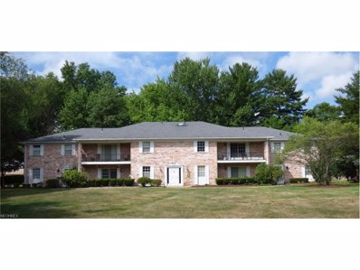 389 Quarry Ln NORTHEAST UNIT D, Warren, OH 44483 - MLS#: 3684247