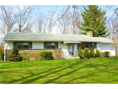 266 Moreland Dr, Canfield, OH 44406 - MLS#: 3766639