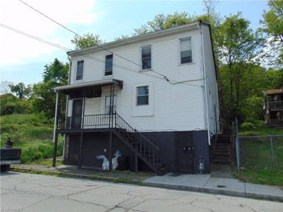 109 S 9th Street, Steubenville, OH 43952 - #: 3811710