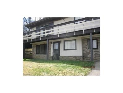 613 Ivy Ln, Martins Ferry, OH 43935 - MLS#: 3826430
