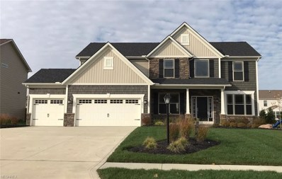 4825 Stag Thicket Ln, Brunswick, OH 44212 - MLS#: 3826729