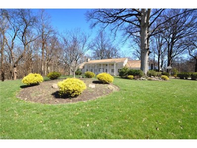 20980 Valley Forge Dr, Fairview Park, OH 44126 - MLS#: 3839660