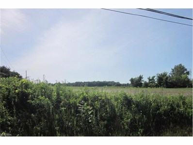State Rd 60, Wakeman, OH 44889 - MLS#: 3851982