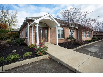 3810 Starr Centre Dr, Canfield, OH 44406 - MLS#: 3855182