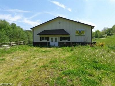 5367 Waltz Rd NORTHEAST, Mineral City, OH 44656 - MLS#: 3864926