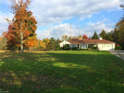 1417 Bell Rd, Chagrin Falls, OH 44022 - MLS#: 3865086
