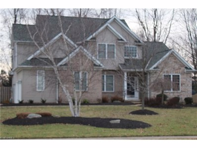 5308 Middlebury Ct, Sheffield Village, OH 44054 - MLS#: 3867183