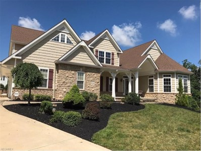 8046 Daisy Hill Ct, Concord, OH 44077 - MLS#: 3869004