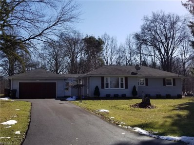 94 Foster Ave, New Middletown, OH 44442 - MLS#: 3870479