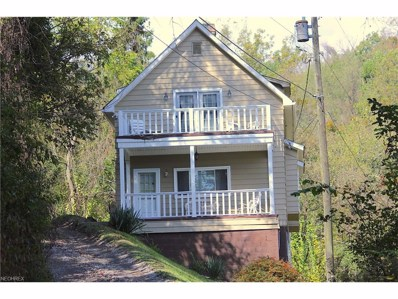 738 MacKey Ave, Martins Ferry, OH 43935 - MLS#: 3879179