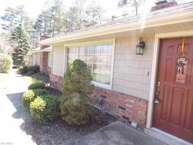 10294 Page Dr, Concord, OH 44060 - MLS#: 3881414