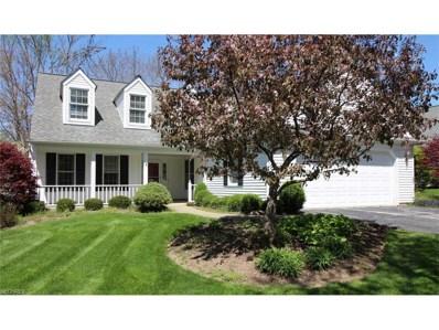 268 Manor Brook Dr, Chagrin Falls, OH 44022 - MLS#: 3881733