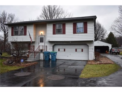 234 E Liberty St, Youngstown, OH 44505 - MLS#: 3883347